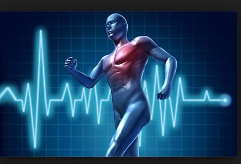 fitness luyện tim mạch và sức mạnh